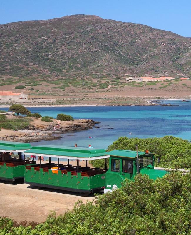 Asinara Experience Avitur Tour Operator