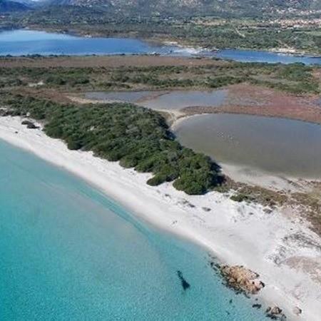 spiaggia-la-cinta-san-teodoro-avitur